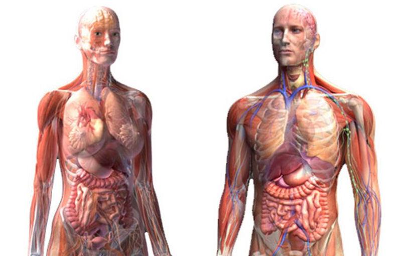 Ποιές ασθένειες θεραπεύει η Ομοιοπαθητική;